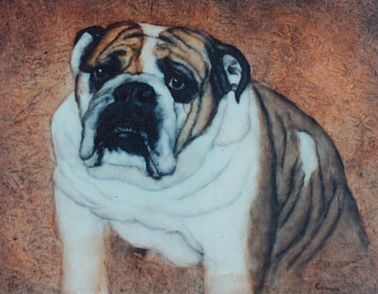 Pet Portrait by Connie Carstensen